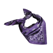 Bandana - Purple